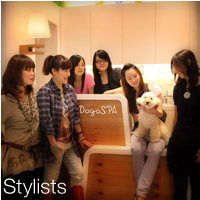 Stylists